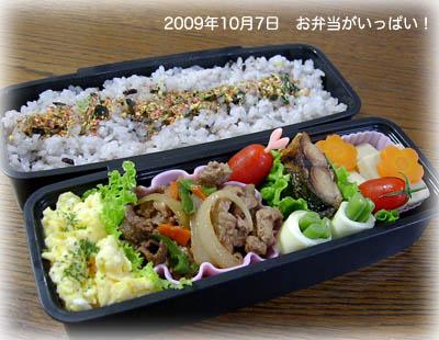 091007お弁当1
