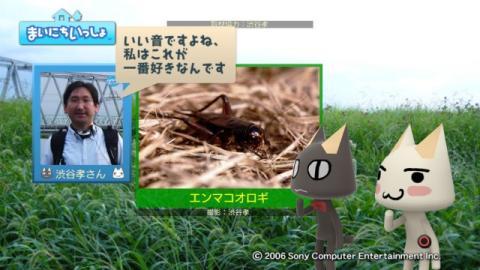 torosute2009/9/26 秋の虫の音 9