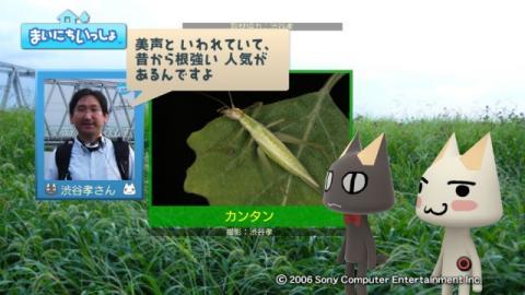 torosute2009/9/26 秋の虫の音 10