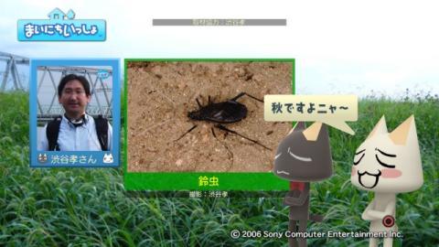 torosute2009/9/26 秋の虫の音 11