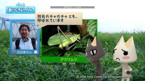 torosute2009/9/26 秋の虫の音 12