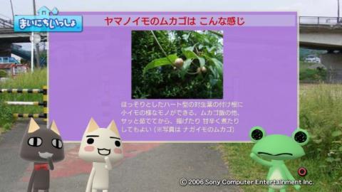 torosute2009/10/7 リッキー枠始動! 24