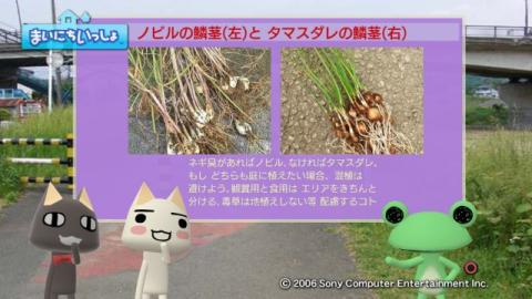 torosute2009/10/7 リッキー枠始動! 40