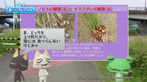 torosute2009/10/7 リッキー枠始動! 41