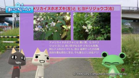 torosute2009/10/7 リッキー枠始動! 44