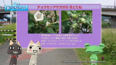 torosute2009/10/7 リッキー枠始動! 46