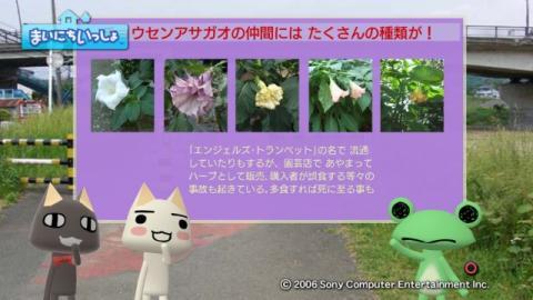torosute2009/10/7 リッキー枠始動! 47