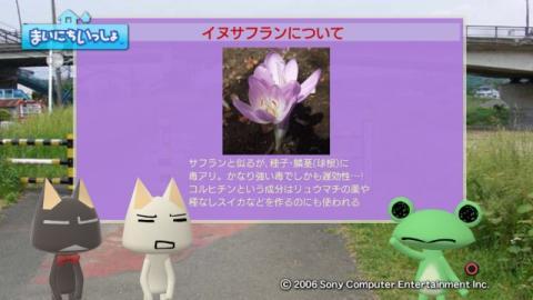torosute2009/10/7 リッキー枠始動! 53