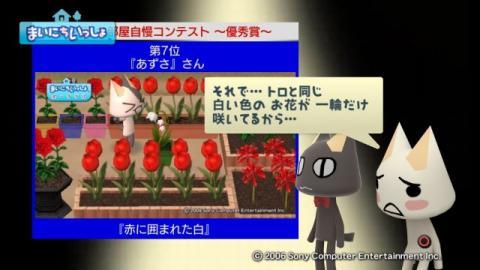 torosute2009/10/15 お花自慢コンテスト結果発表 41