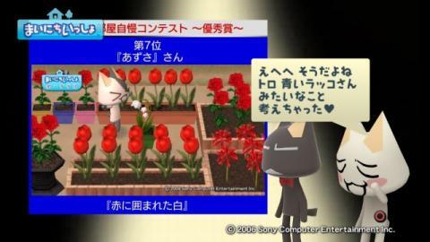 torosute2009/10/15 お花自慢コンテスト結果発表 42