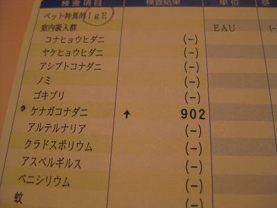 2-0910ぶ1955