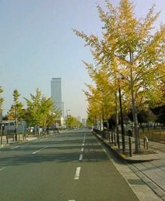 200711193.jpg