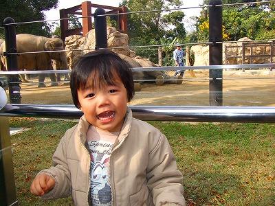 2007_1117上野動物園0028