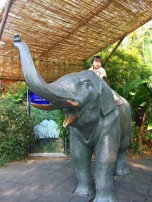 2007_1117上野動物園0033