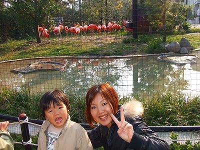 2007_1117上野動物園0042