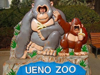 2008_0226チョコフォン・上野動物園0019
