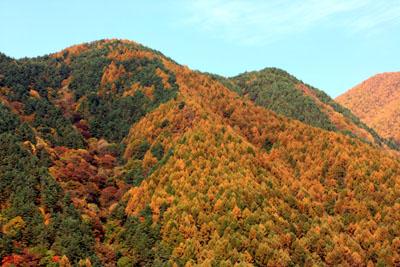 091030宝剣岳 (33)