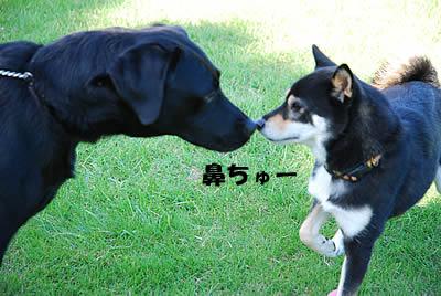 20071023_0070.jpg