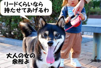 20071111_0051.jpg