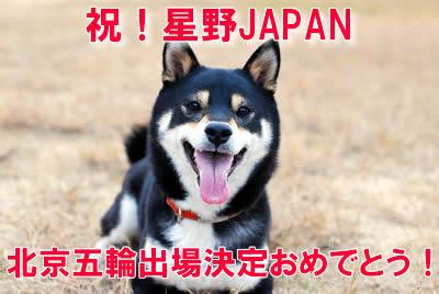 祝!星野ジャパン