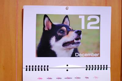 カレンダーもすごすぎ