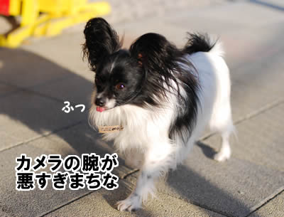 20071216_0036.jpg