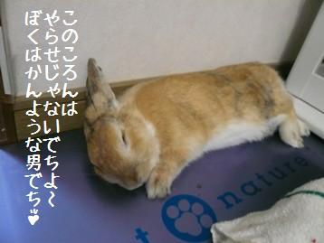 20090930_4.jpg