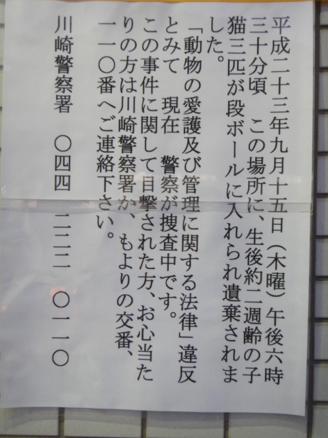 DSC08551.jpg