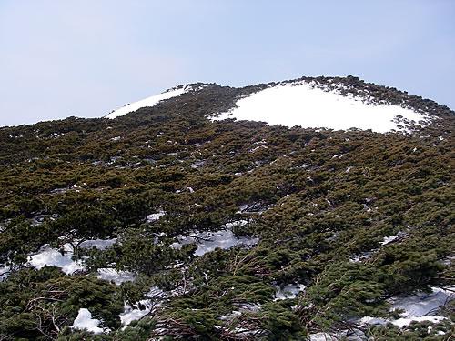 hitokoma2011-516-2.jpg