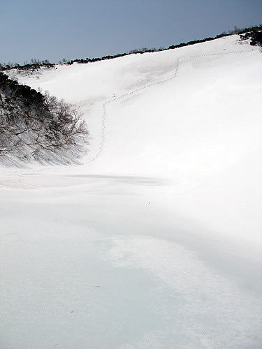 hitokoma2011-516-5.jpg