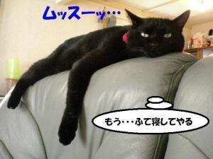 ふて寝ミー