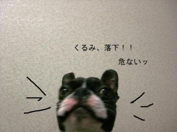 CIMG4622.jpg