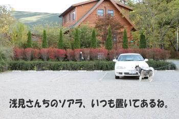 20091011_2.jpg