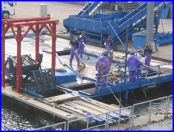 Chitose-2009-9-20-3.jpg