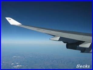 JAL418-2-2007.10.22.jpg