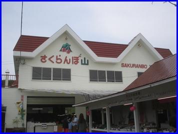 niki-2009-9-21.jpg