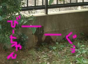 2006_10_21_8.jpg