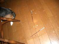2007_01_05_2.jpg