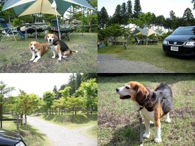 2007_05_27_2.jpg