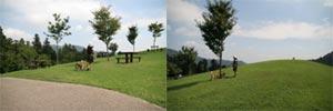 2007_09_09_8.jpg