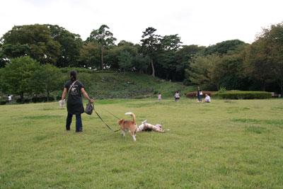 2009_09_23_10.jpg