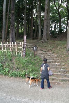 2009_09_23_11.jpg