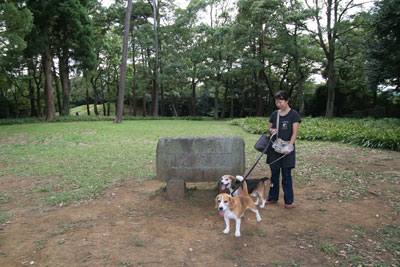 2009_09_23_9.jpg