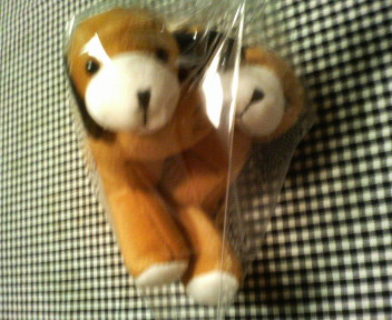 beagle100.jpg