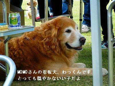 s-2009_0731MOMO運動会0007