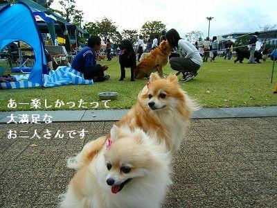 s-2009_0731MOMO運動会0014