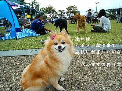 s-2009_0731MOMO運動会0017