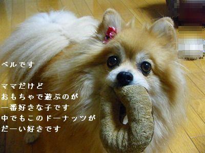s-2009_1018MOMO運動会0009