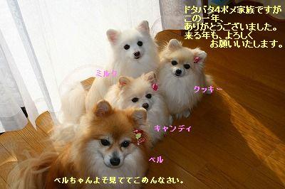 s-IMG_1484_20111231011503.jpg