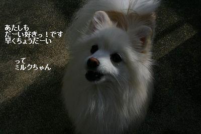 s-IMG_1506.jpg